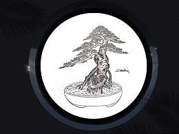 吕绍武手绘盆景设计效果图