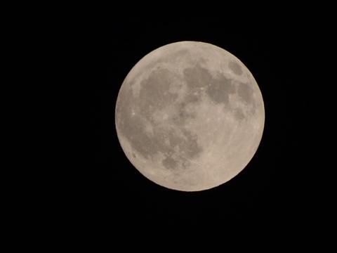 15的月亮16圆_十五的月亮十六圆