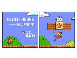 【Blackhouse】超级玛丽猫