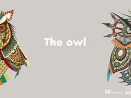 Theowl猫头鹰插图