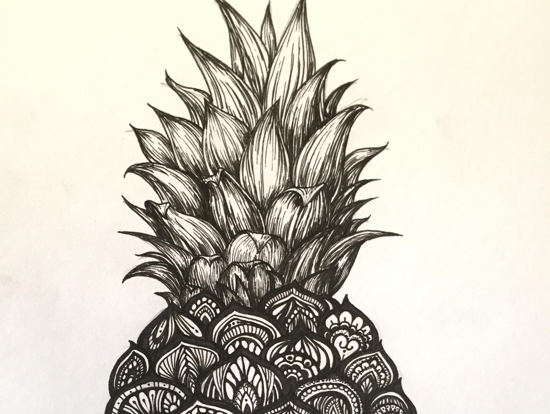 黑白插画——菠萝