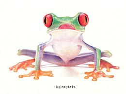 圆珠笔绘动物——青蛙