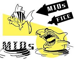 黄色鲨鱼MIDS图案设计[带PSD源文件]