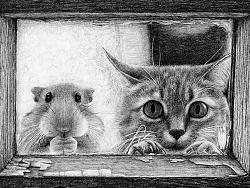 OY钢笔画:猫和仓鼠