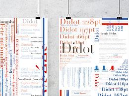 西文字体海报:Didot + Champs - Elysées