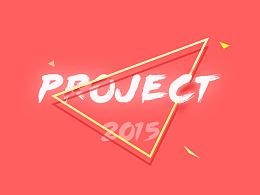 2015年在公司的一部分项目