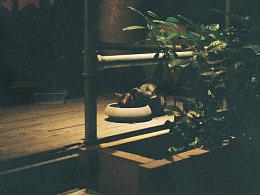 『胶片夜拍』第一卷夜拍