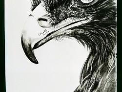 Look Me in the Eye by Shero刘