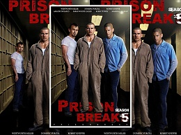 Prison break fifth season is coming