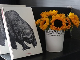《蜜獾》—傅淳强硬笔画系列笔记本