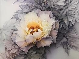 白牡丹—夜光白