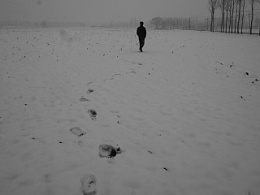 2015 廊坊的雪
