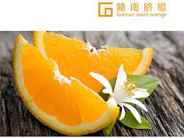 赣南脐橙画册设计
