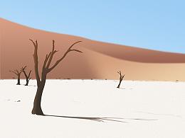 有意境的一张沙漠图