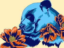 与兽花开-熊猫