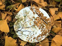 一镜之秋🍂☁️