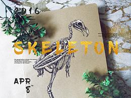 骨骼练习 | SKELETON
