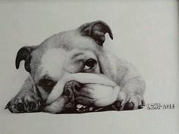 圆珠笔画小动物