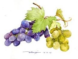 请大家吃葡萄吧