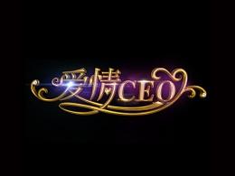 优酷出品网剧爱情CEO字形字效制作