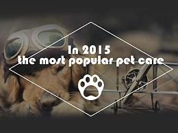 2015年宠物洗护微信APP