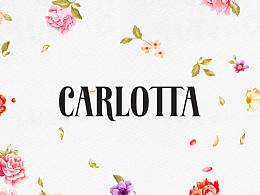 CARLOTTA  烘培·西式糕点品牌