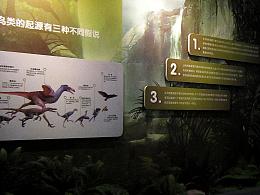 2013.鄂尔多斯湿地野生鸟类展览馆