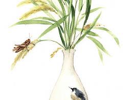 《稻田的故事》 