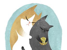 给我变成星星的猫咪 罗雨舒插画