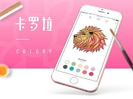 卡罗拉Colory2.0APP设计