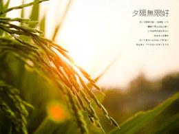 日出,日落,星空,夜。(下集)