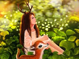 阳光下的小鹿