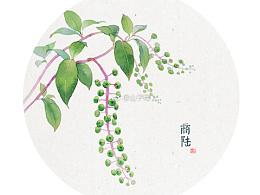 水彩画 水彩花卉 手绘
