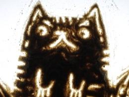 定格动画—Tiger
