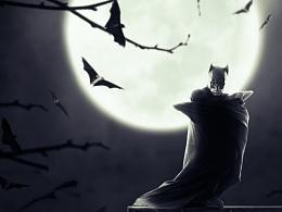 蝙蝠侠情节