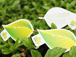 Generation Green business card design