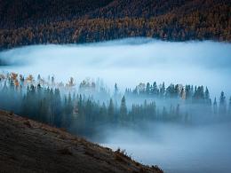 喀纳斯晨雾