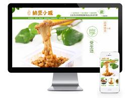 电子商务-淘宝、天猫店铺装修饮食类-美味纳豆界面设计
