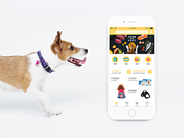 一款宠物用品app
