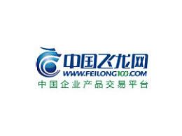 中国飞龙网/纳智设计(2013标志)