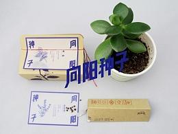 种子包装设计—向阳