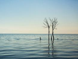 苍山下洱海边,有这片静谧的所在