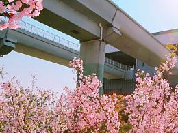 春天飞入地下铁