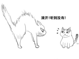 两只小猫系列漫画