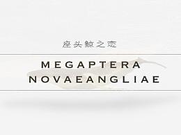 座头鲸之恋MegapteraNovaeangliae