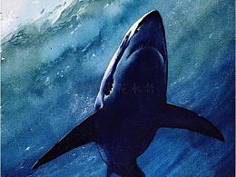 日练~深海狂鲨~
