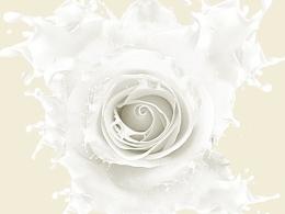 红玫瑰 白玫瑰一支玫瑰合成
