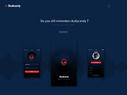 skullcandy(web Design)