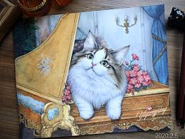 手绘缅因猫咪