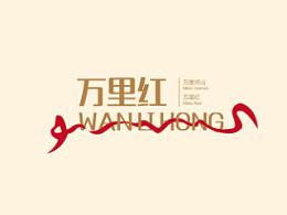 logo(飞机稿)